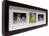Pet Framing